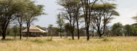 Exclusive Mobile Camps in Serengeti National Park in Northern Tanzania